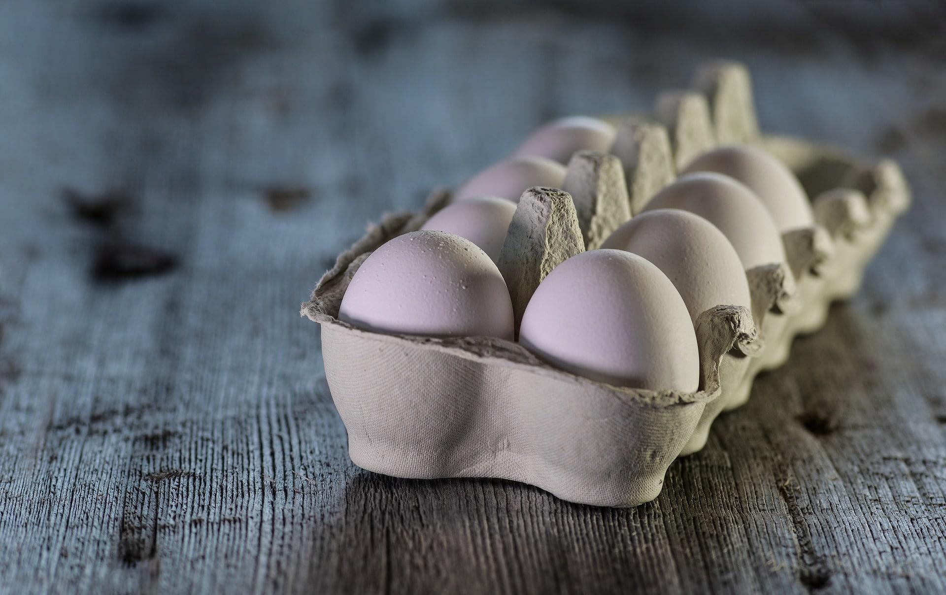 כמה חלבון יש בביצה?